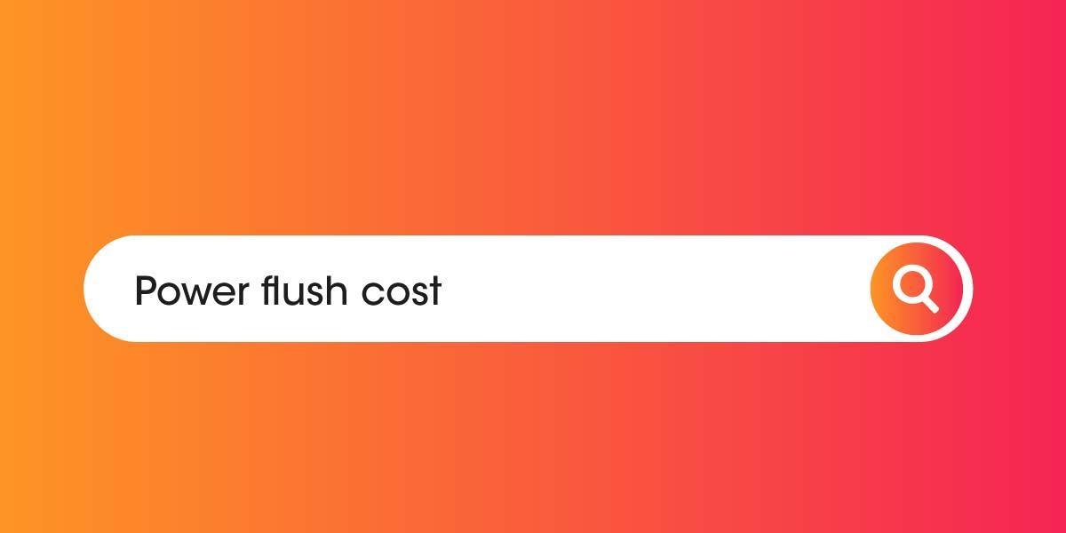 Power flush cost